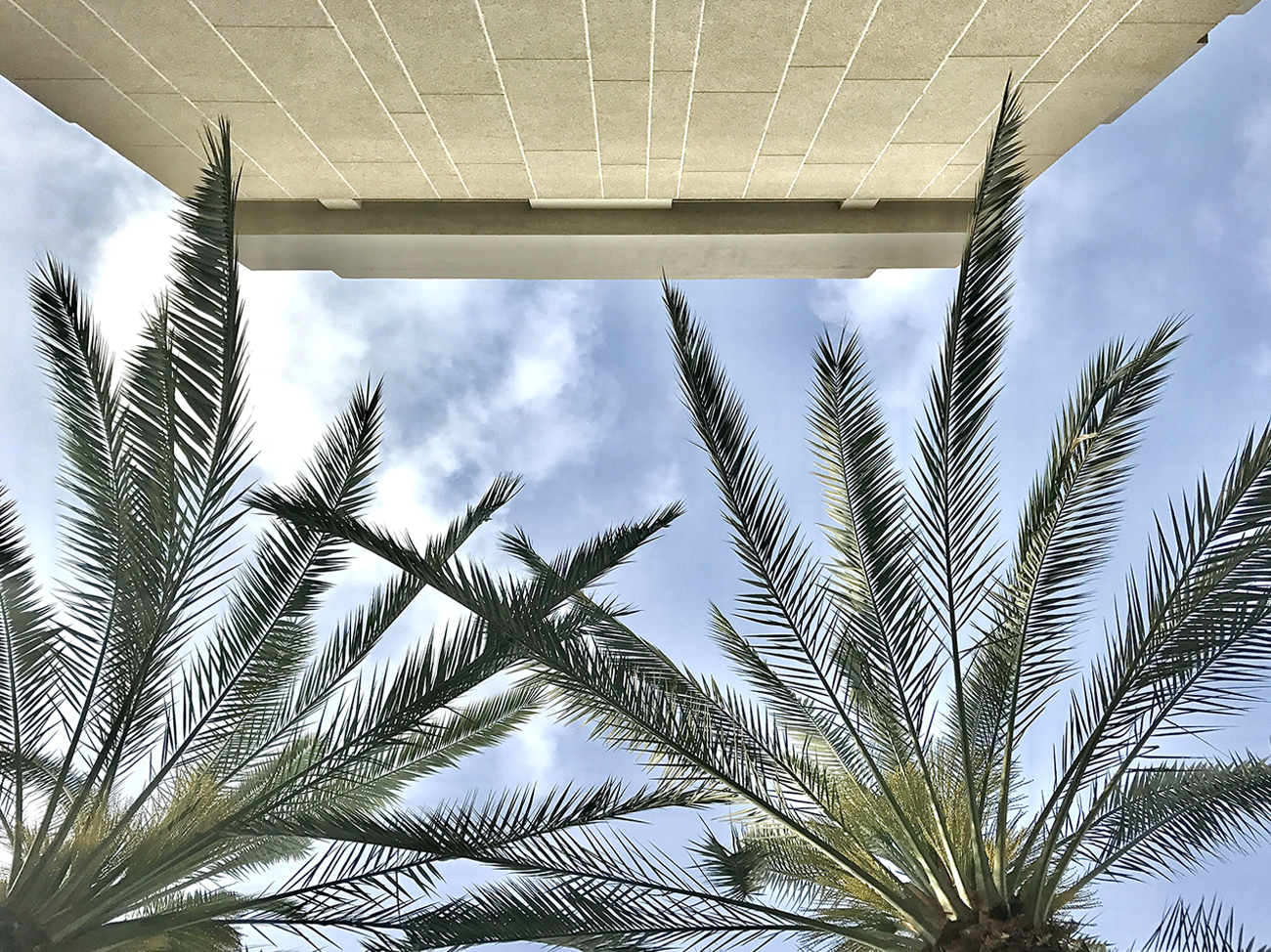 Mashya Tel Aviv