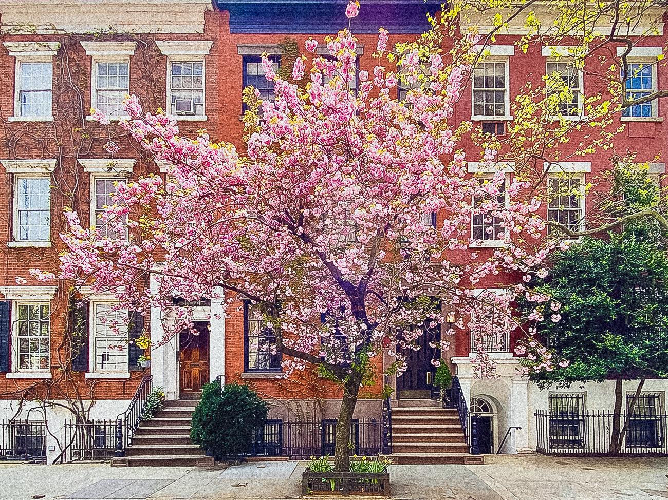 Buvette West Village New York City